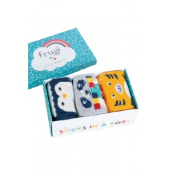 Socks in a box - 3 calzini in cotone biologico Frugi